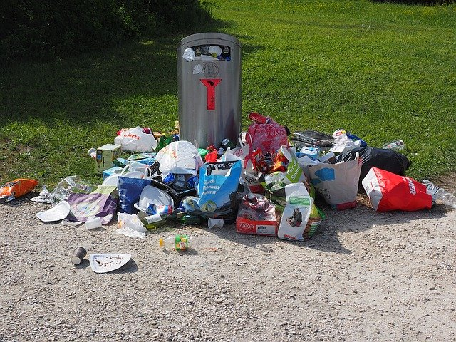 gnats and garbage